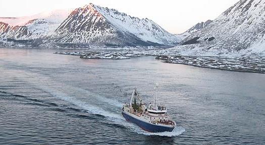 Lofoten, Noruega | namasteviajes.com