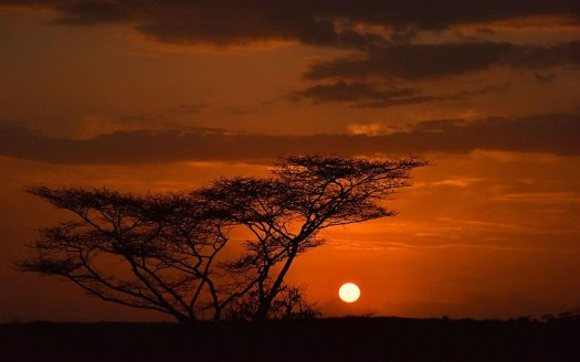 Turmi, Etiopía - Rod Waddington, Creative Commons Attribution/Share Alike 2.0 Generic   namasteviajes.com