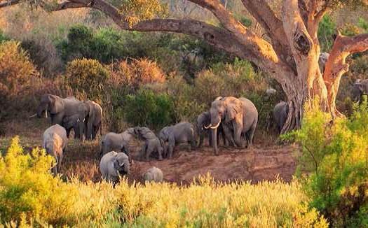 Sudáfrica | namasteviajes.com