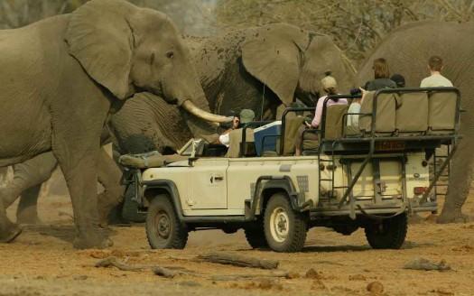 Senda de los elefantes (Botswana / Zimbabwe) | namasteviajes.com