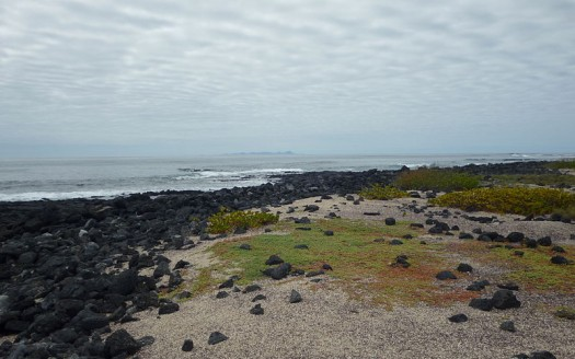 Bahía Tortuga, Isla Santa Cruz / Islas Galápagos (Ecuador) - David Adam Kess | namasteviajes.com