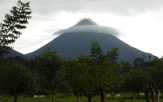 Volcán Arenal, Costa Rica - Veronidae